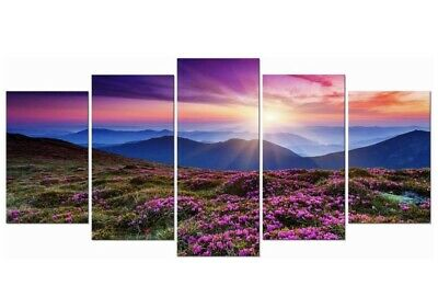 UNIQUE/ Framed 5 pcs  Mountains In Sunrise HD Print Wall Art Modular Pictures