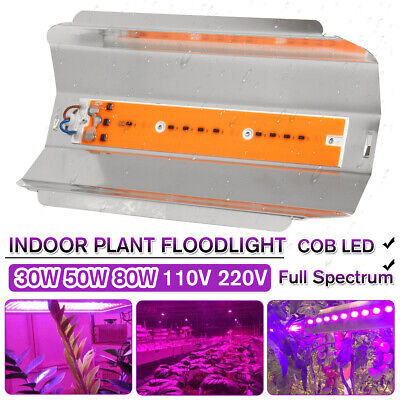 30W 50W 80W LED Flood Light Outdoor Garden Landscape Yard Lodine Tungsten Lamp