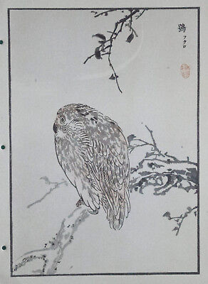 URAL OWL : Print Of a 1880s JAPANESE WOODBLOCK Bird Print By BAIREI