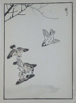 TREE SPARROW : Print Of a 1880s JAPANESE WOODBLOCK Bird Print By BAIREI