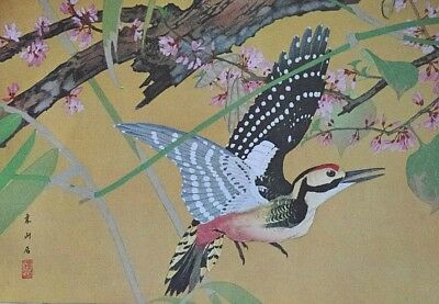 SPOTTED WOODPECKER By RAKUSAN - Old Art Print of a Japanese Woodblock / Woodcut