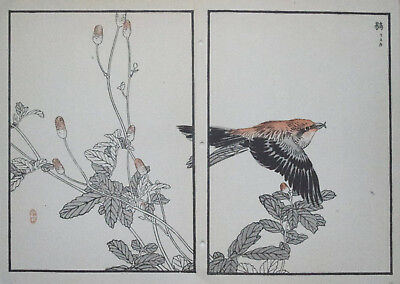 RED CROSSBILL : Print Of a 1880s JAPANESE WOODBLOCK Bird Print By BAIREI