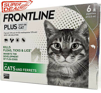 Frontline Plus for Cats 8 weeks - 6 Doses