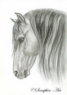 Horse Original Graphite ACEO Andalusian PRE Painting Stallion Seraphin-Art