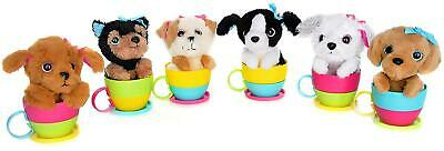 Pups In Cups Surprise Terrier, Yorkshire Terrier, Cockapoo, Labrador, Sheepdog