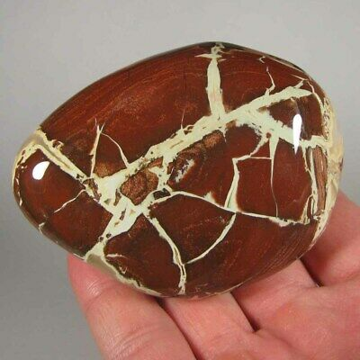 """3.3"""" BRECCIATED JASPER Polished Palm Stone Massage Therapy - South Africa"""