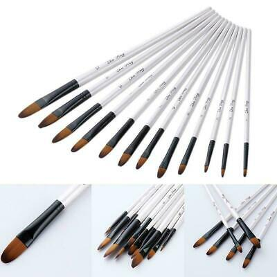 12Pcs Paint Brushes Kits for Acrylic Oil Watercolor Artist Painting Art Craft