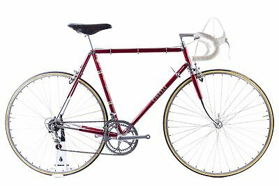 USED Vintage Cinelli Speciale Corsa 56cm Road Bike Campy 50th Anniversary Group