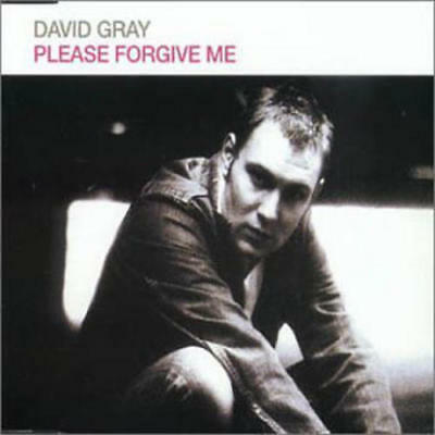 David Gray ‎– Please Forgive Me