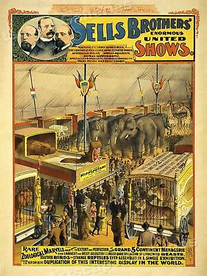 1890s Sells Brothers Zoo Beasts Displays Circus Poster - 20x28