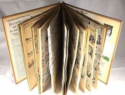 Political Cartoon Newspaper Clippings Scrapbook