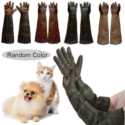 N//B Tiky Takaus Bird Training Anti-Bite Gloves Small Animal Handling Wire Gloves Chewing Protective Gloves for Parrot Squirrels Hamster Hedgehog