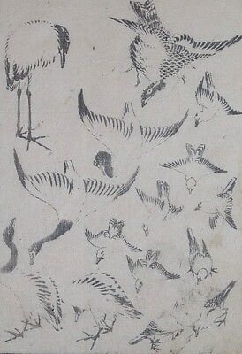 HOKUSAI MANGA - VARIOUS BIRDS - Genuine Woodblock Print (Woodcut)