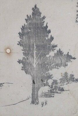HOKUSAI MANGA - ' CEDAR TREE OF YADATE ' - Genuine Woodblock Print (Woodcut)