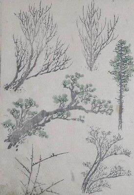HOKUSAI MANGA - TREE TYPES - Genuine Woodblock Print (Woodcut)
