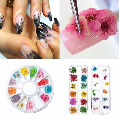 12 Colors DIY Nail Art Dried Flowers 3D Flower Decoration Nails Stickers Tips