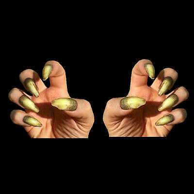Warlock Creepy Claws Witch Dental Distortions Adult Halloween Costume Nails Prop