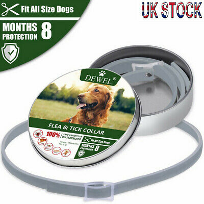 Natural Flea Collar For Dogs - Flea and Tick Protection For Up to 8 Months UK!!