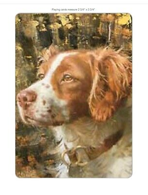 Brittany Spaniel Playing Cards Poker Size Deck In Hard Case Brand New