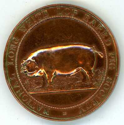National Long White Lop Eared Pig Society Bronze Medal 1936 To W.h. Neal
