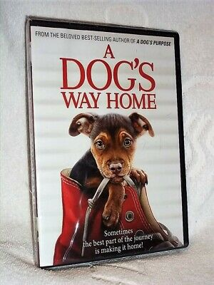 A Dog's Way Home (DVD, 2019) NEW Jonah Hauer King Bryce Dallas Howard