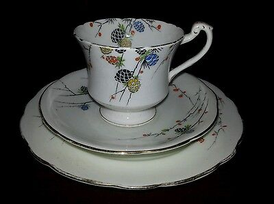 Rare collectable ROYAL Paragon LARCH CONES Hand Painted Trio. Cup saucer plate