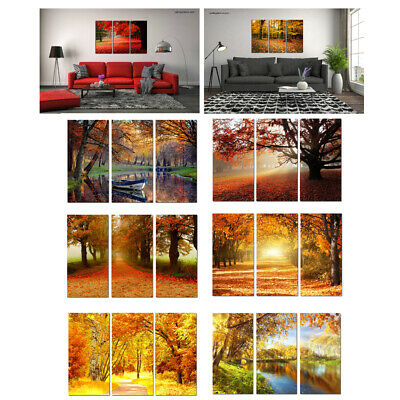 Framed Canvas Print Painting Wall Art HD Picture Golden Autumn Scenery Home Deco