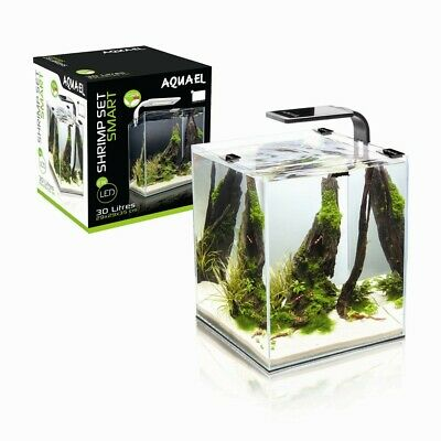 Shrimp Set Smart 2 Led 10 White Aquael Caridine Pesci Piante Acquario Completo