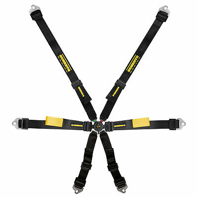 Schroth Enduro 6 Point Harness