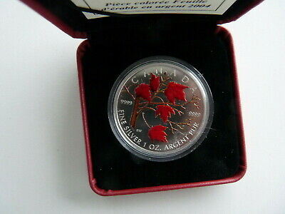 Canada 2004 5  Dollar Silver Maple Leaf Coloured  Coa  And Case  T1215