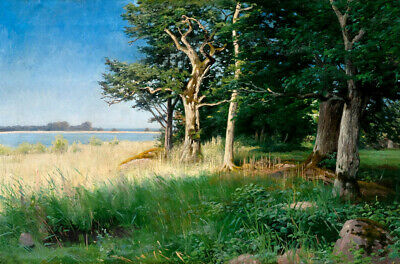Quiet summer landscape oil painting Giclee Art Printed on canvas L2590
