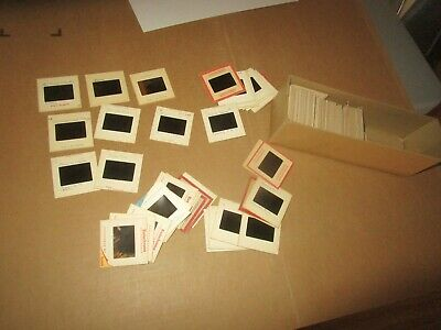 Big Lot of Vintage C. Early 1960's Bird Slides (110+) Ocean City Maryland etc.