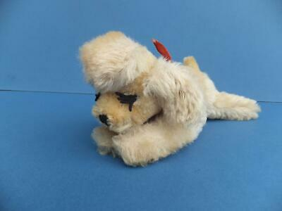 Vintage Antique Steiff Mohair Toy Floppy Snobby Poodle Dog Button & Tags 7317,04