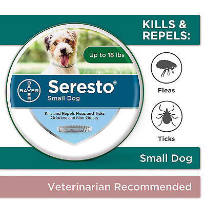 Bayer Seresto Flea and Tick Dog Collar for Small Dog 8 Months Protection