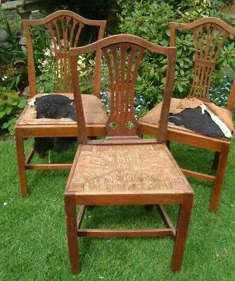 Three Antique Country House  Chairs - 200 + YEARS OLD CIRCA GEORGE 111