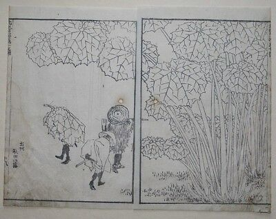 HOKUSAI MANGA - BUTTERBUR LEAVES, AKITA - Genuine Woodblock Print (Woodcut)