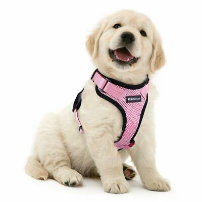 Dog Puppy Cat Rabbit No Pull Harness Escape Proof  Padded Vest Soft Mesh Pink S
