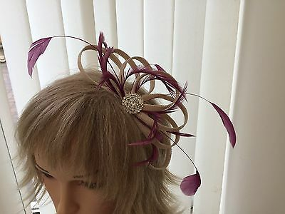 Champaigne & Amethyst  & Feather Fascinator Can Be  Made To Match Outfit
