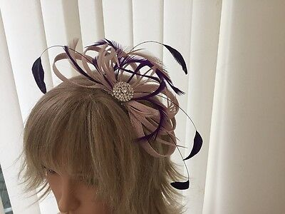 Nude Pink And Purple   Sinamay/ Feather Fascinator  Can Be Custom Made To Match