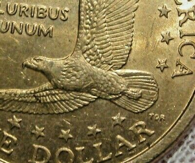 """2005 P Sacagawea /""""Satin/"""" Dollar ~ With Eagle in Flight Reverse ~ In Mint Cello"""