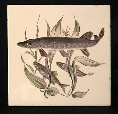 1960s Villeroy & Boch Mettlach Tile with Northern Pike Fish Illustration, 6 x 6""