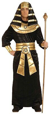Pharaoh Men's Adult Ancient Egyptian King Tut Halloween Costume