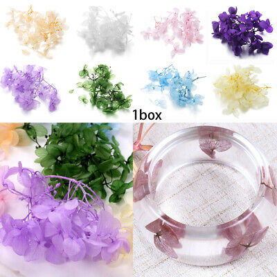 Making Handmade Resin filler Dry Flower Filling Materials Crystal uv accessorie