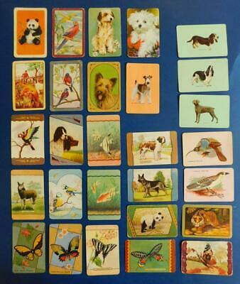 SC8 28x Vintage 1950s ANIMALS 24x Plain Back 4x COLES Swap Cards