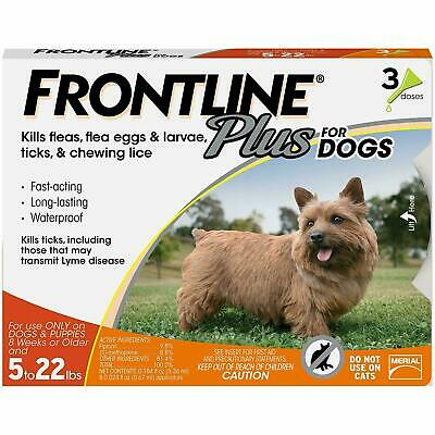 FRONTLINE Plus for Dogs -Orange, For Dogs 5 to 22 lbs - 3 doses - Free shipping