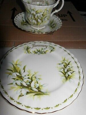 Royal Albert ' Flower Of The Month  ' Tennis Set -  January Snowdrops   Trio
