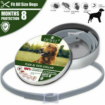 NEW Natural Flea Collar Dogs Remove Flea and Tick Protection For Up to 8 Months