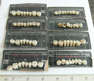 RARE 8 Antique De Trey's Anatomical Diatorics Denture Moulds Dentist Teeth Tooth