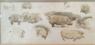 Lovely late 19th/early 20th century watercolour of pigs