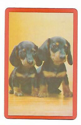Daschhund Puppies X 1 Only Single Vintage Playing/Swapcard